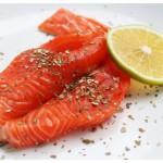 salmon-web